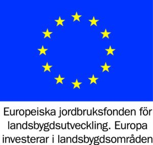 EU-bidraget är beviljat